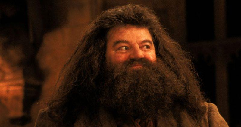 Barba não é cabelo